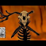 - httpsi - FINNTROLL – Forsen (OFFICIAL VIDEO)
